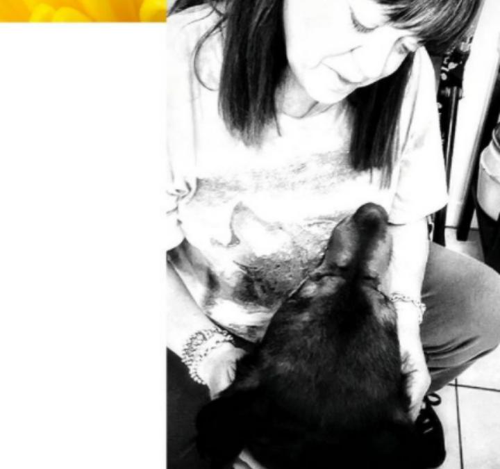 Mi-chien Mi-loup, un amour de tous les instants