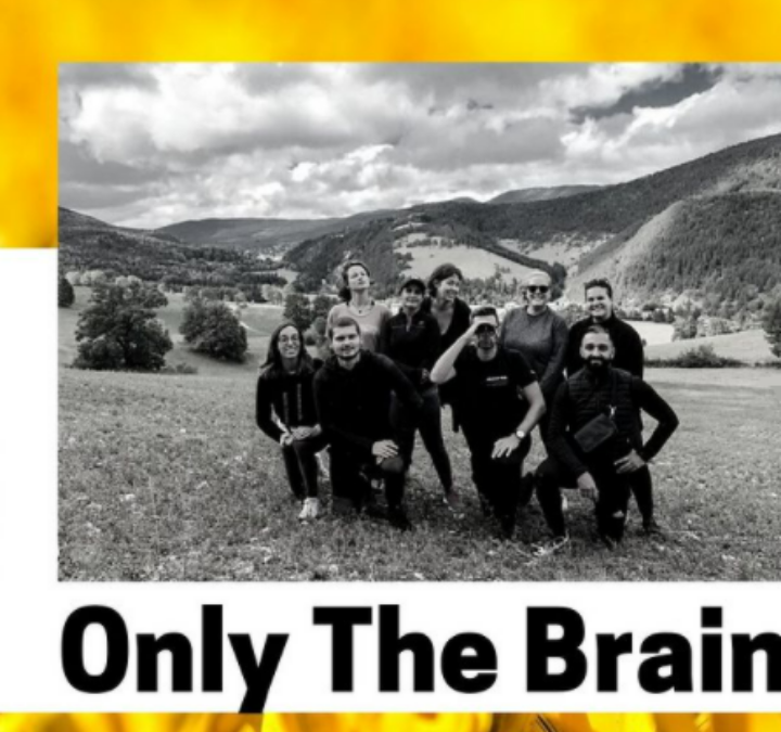 Immersif et instructif, Only the Brain