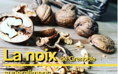 Les noix de Grenoble source d'énergie